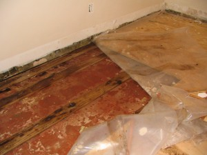 removing carpet and subfloor